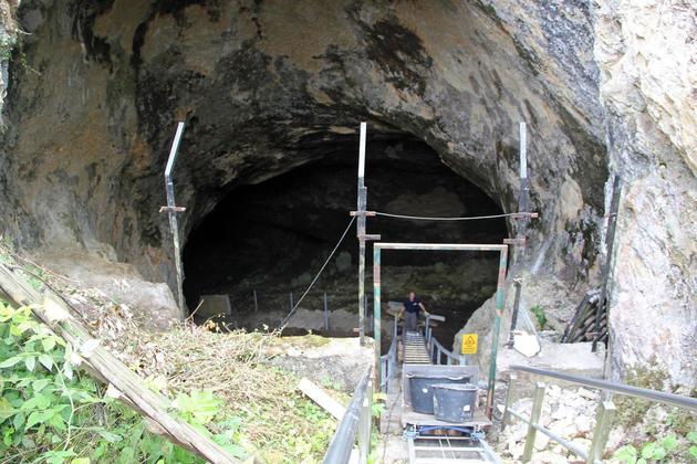 Sontheimer Höhle